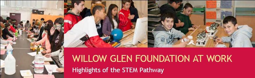 WGF-Report2014-STEM